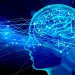 脳伝達イメージ